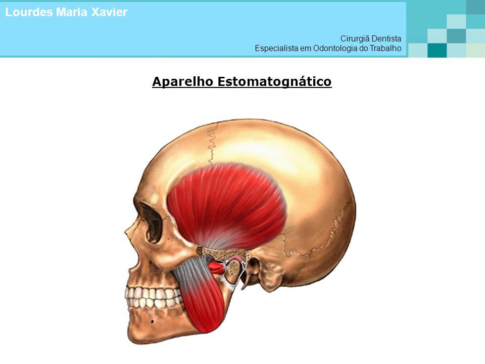 Aparelho Estomatognático Lourdes Maria Xavier Cirurgiã Dentista Especialista em Odontologia do Trabalho