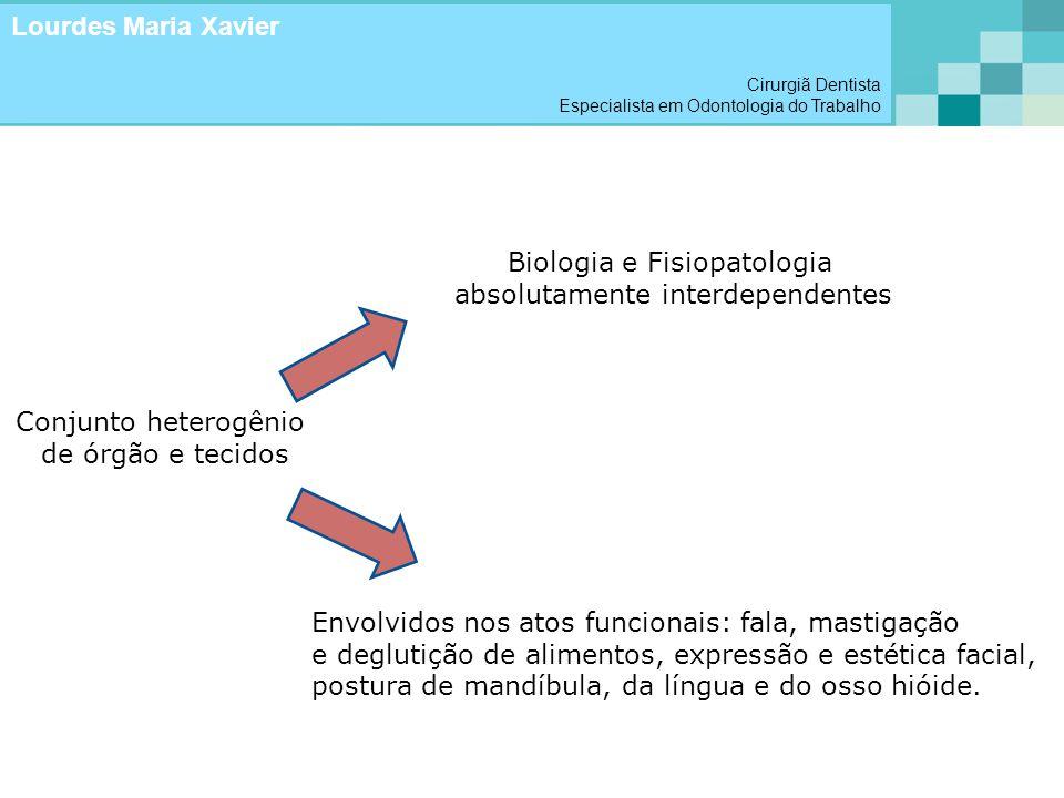 Conjunto heterogênio de órgão e tecidos Biologia e Fisiopatologia absolutamente interdependentes Envolvidos nos atos funcionais: fala, mastigação e de