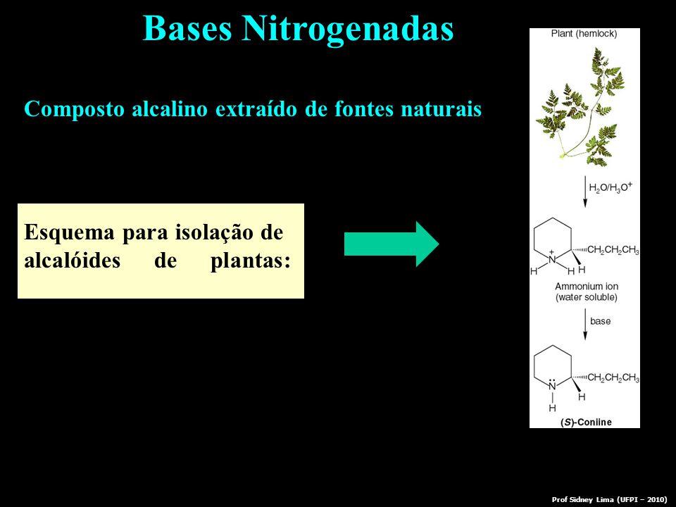 Esquema para isolação de alcalóides de plantas: Bases Nitrogenadas Composto alcalino extraído de fontes naturais Prof Sidney Lima (UFPI – 2010)