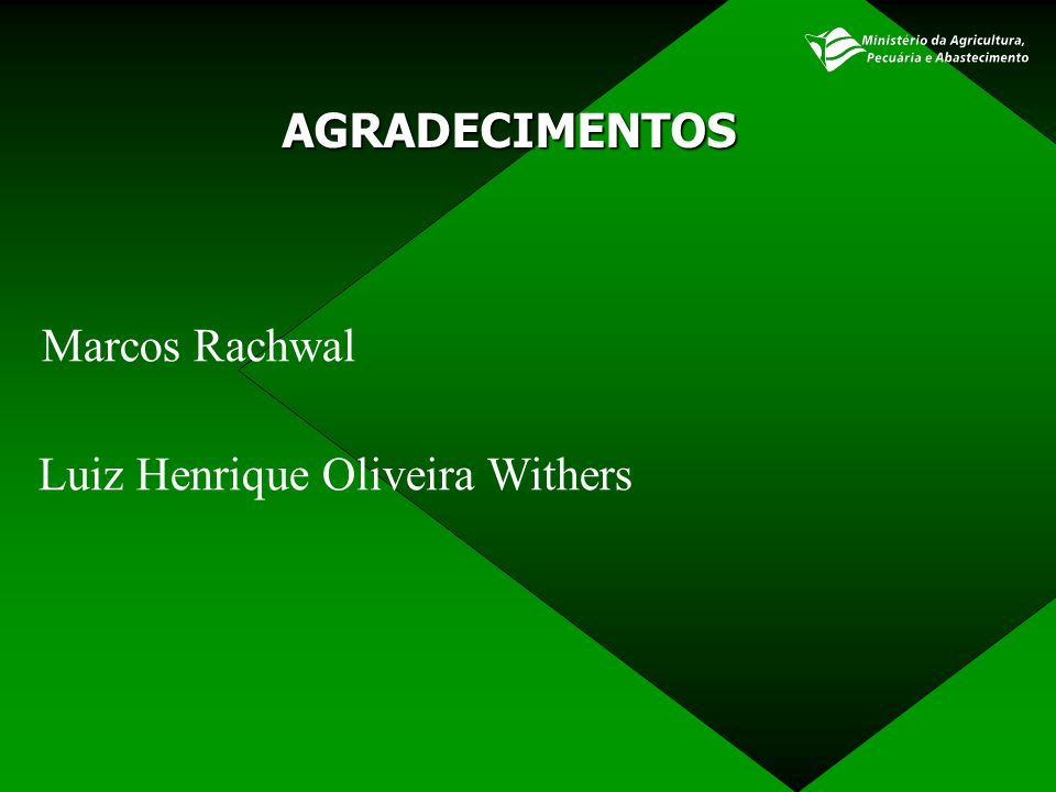 AGRADECIMENTOS Marcos Rachwal Luiz Henrique Oliveira Withers