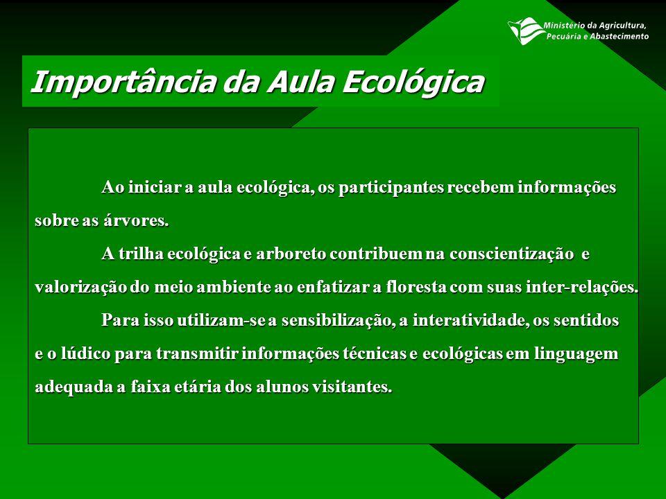 Importância da Aula Ecológica Ao iniciar a aula ecológica, os participantes recebem informações sobre as árvores. A trilha ecológica e arboreto contri