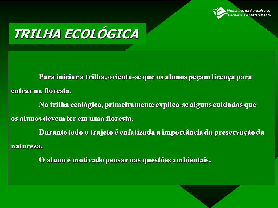 TRILHA ECOLÓGICA Para iniciar a trilha, orienta-se que os alunos peçam licença para entrar na floresta. Na trilha ecológica, primeiramente explica-se