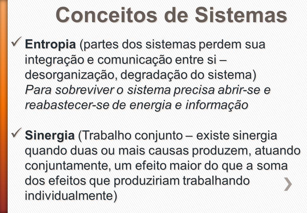 Conceitos de Sistemas Entropia (partes dos sistemas perdem sua integração e comunicação entre si – desorganização, degradação do sistema) Para sobrevi