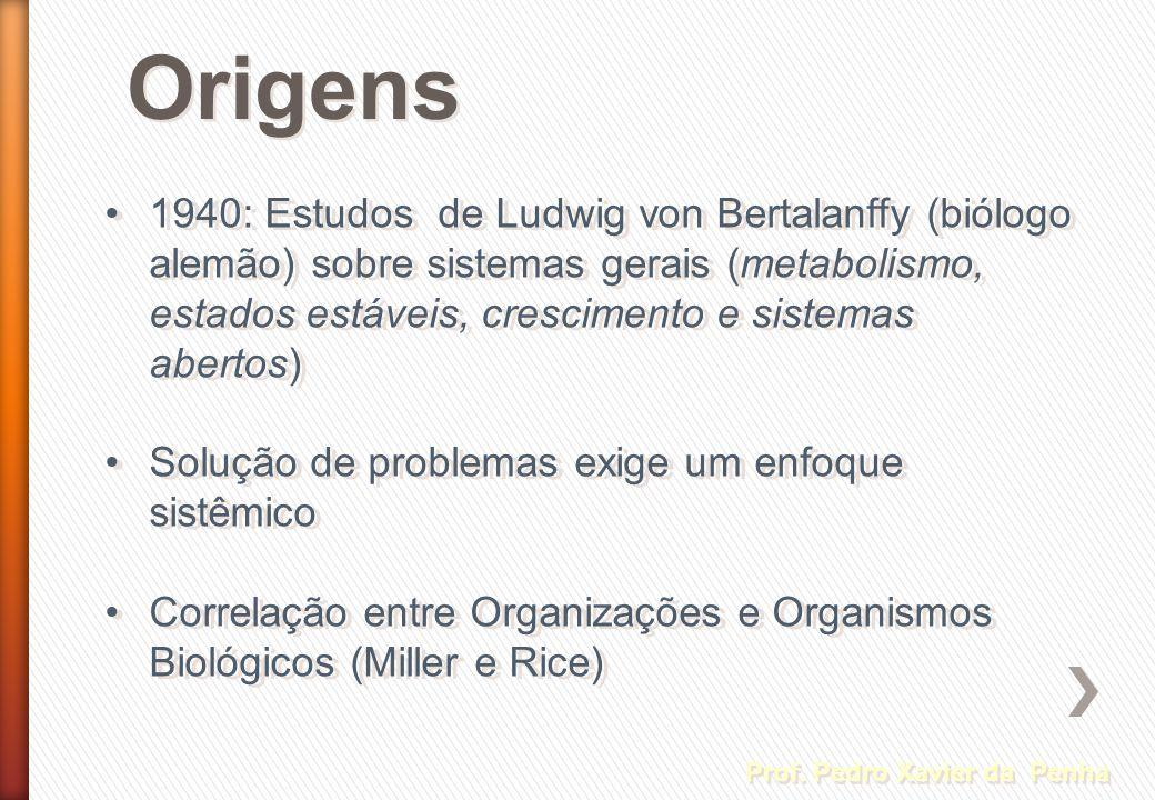 Origens 1940: Estudos de Ludwig von Bertalanffy (biólogo alemão) sobre sistemas gerais (metabolismo, estados estáveis, crescimento e sistemas abertos)