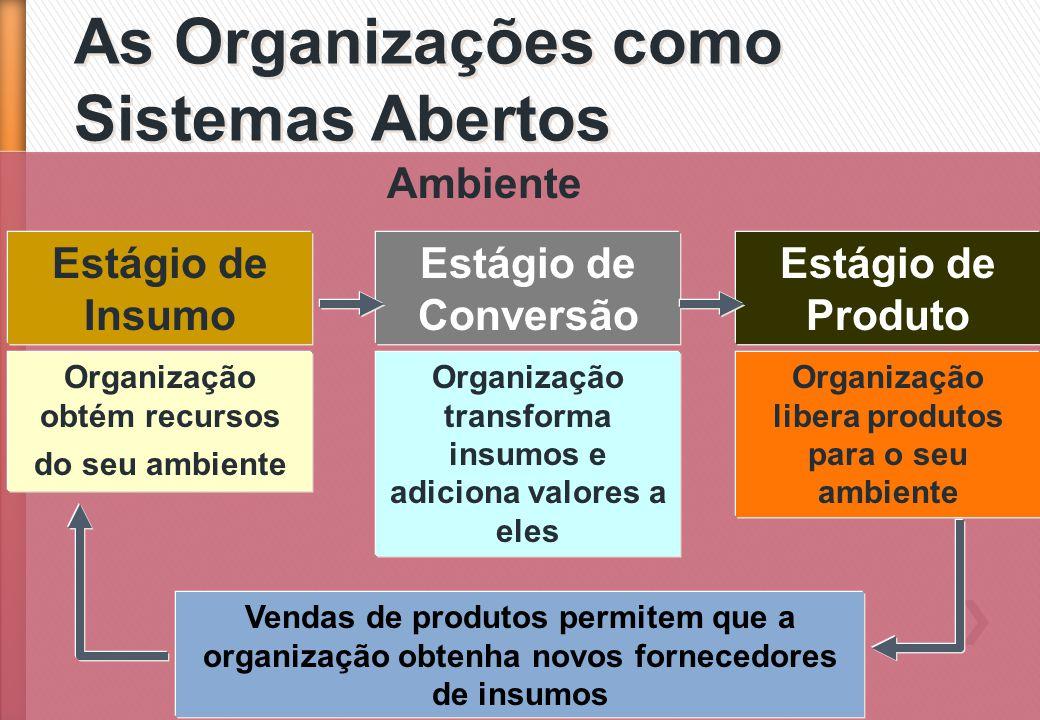 As Organizações como Sistemas Abertos Ambiente Estágio de Insumo Organização obtém recursos do seu ambiente Estágio de Conversão Organização transform
