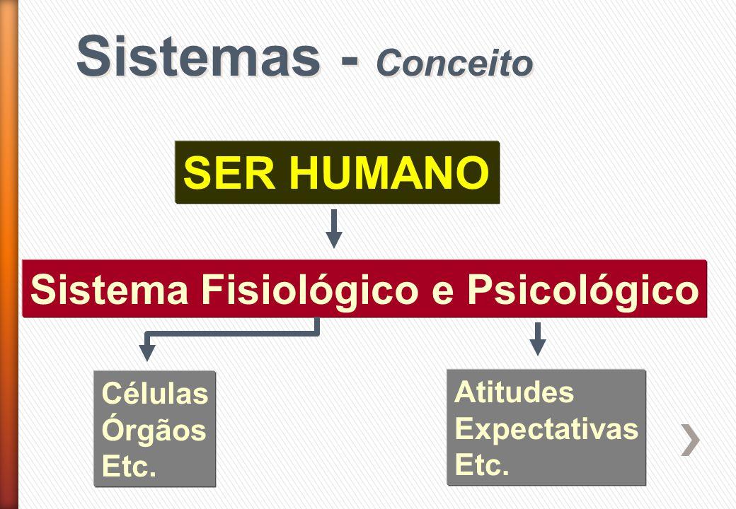 Sistemas - Conceito SER HUMANO Sistema Fisiológico e Psicológico Células Órgãos Etc. Atitudes Expectativas Etc.