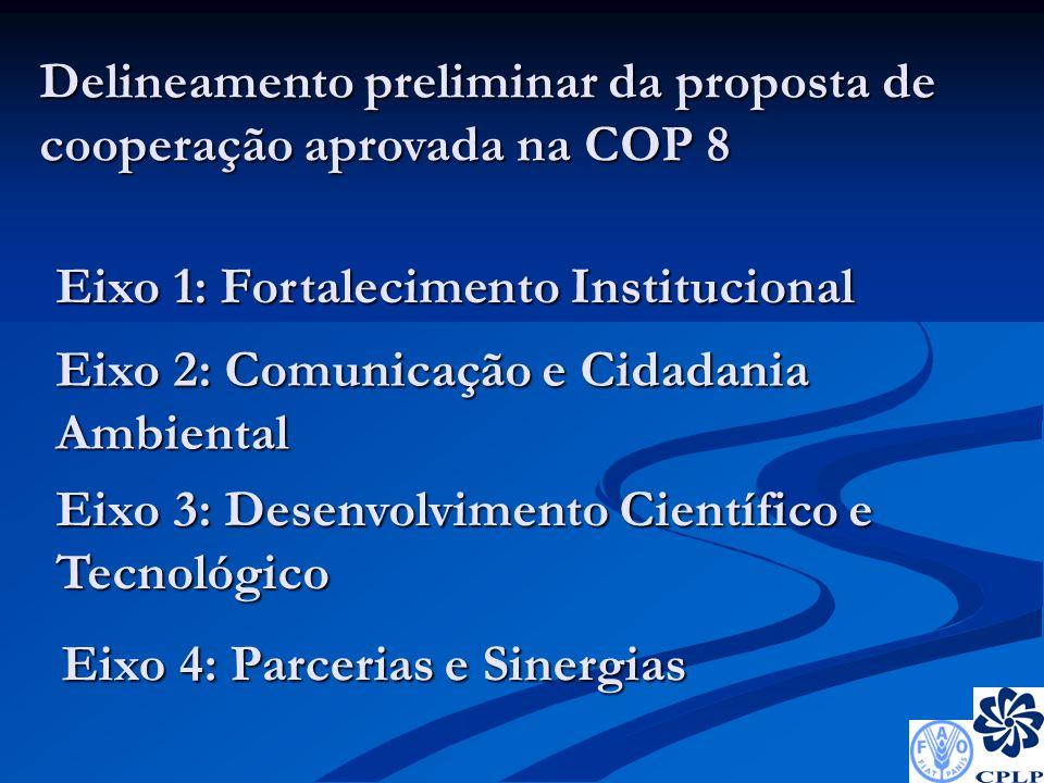 Eixo 1: Fortalecimento Institucional Eixo 2: Comunicação e Cidadania Ambiental Eixo 3: Desenvolvimento Científico e Tecnológico Eixo 4: Parcerias e Sinergias Delineamento preliminar da proposta de cooperação aprovada na COP 8
