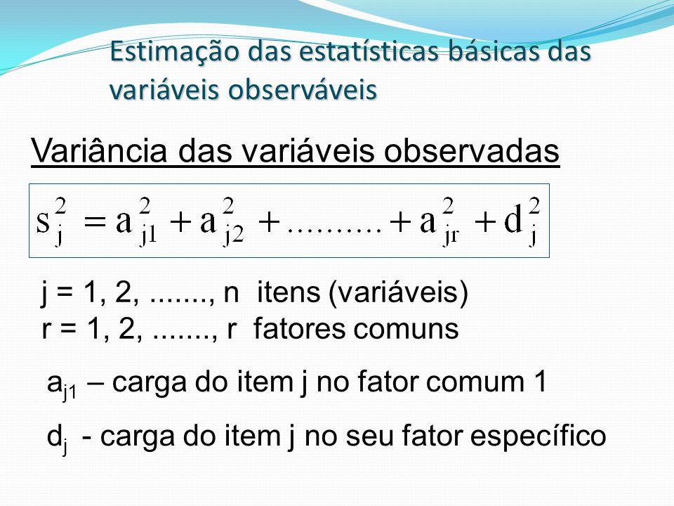 Variância das variáveis observadas Estimação das estatísticas básicas das variáveis observáveis j = 1, 2,......., n itens (variáveis) r = 1, 2,......., r fatores comuns a j1 – carga do item j no fator comum 1 d j - carga do item j no seu fator específico