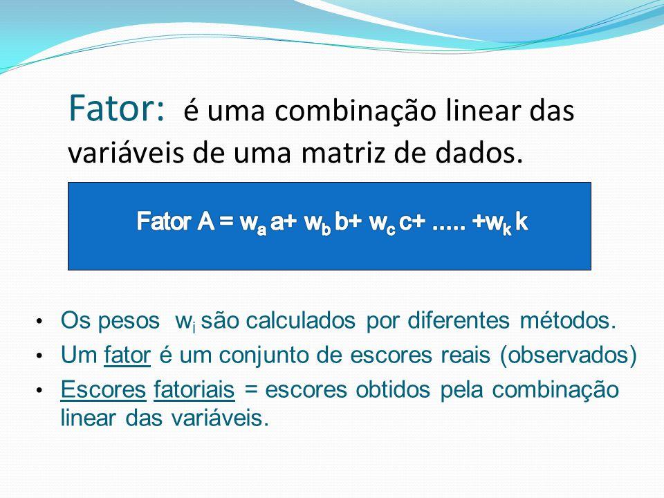Fator: é uma combinação linear das variáveis de uma matriz de dados. Os pesos w i são calculados por diferentes métodos. Um fator é um conjunto de esc