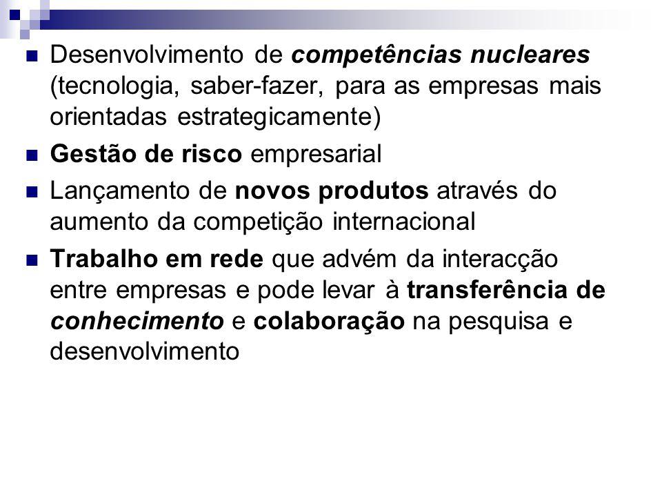 Desenvolvimento de competências nucleares (tecnologia, saber-fazer, para as empresas mais orientadas estrategicamente) Gestão de risco empresarial Lan