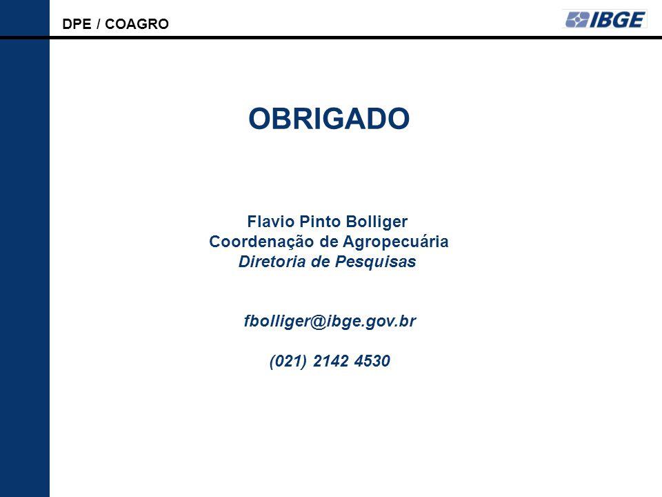 DPE / COAGRO LSPA OBRIGADO Flavio Pinto Bolliger Coordenação de Agropecuária Diretoria de Pesquisas fbolliger@ibge.gov.br (021) 2142 4530