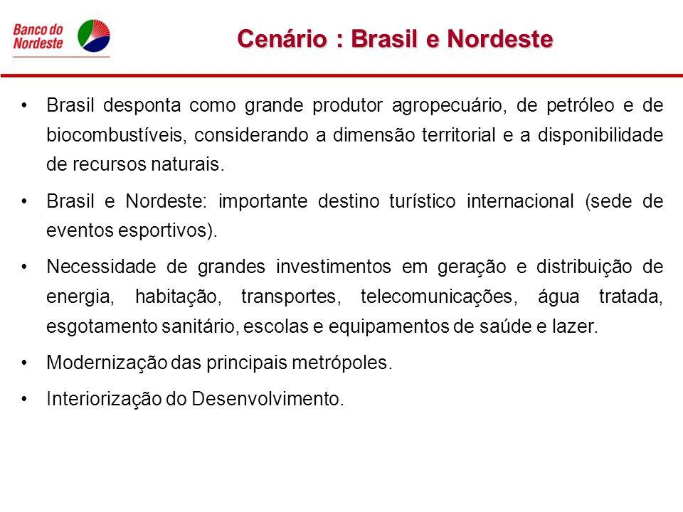 Brasil desponta como grande produtor agropecuário, de petróleo e de biocombustíveis, considerando a dimensão territorial e a disponibilidade de recurs