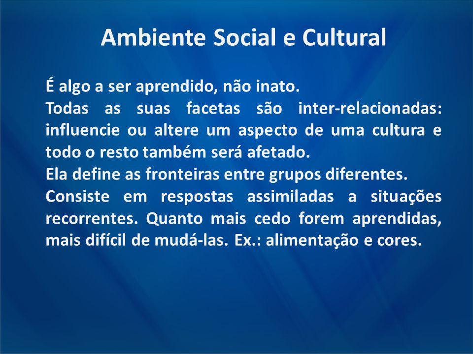 Ambiente Social e Cultural É algo a ser aprendido, não inato. Todas as suas facetas são inter-relacionadas: influencie ou altere um aspecto de uma cul