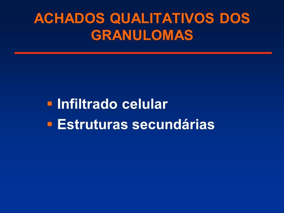 ACHADOS QUALITATIVOS DOS GRANULOMAS  Infiltrado celular  Estruturas secundárias