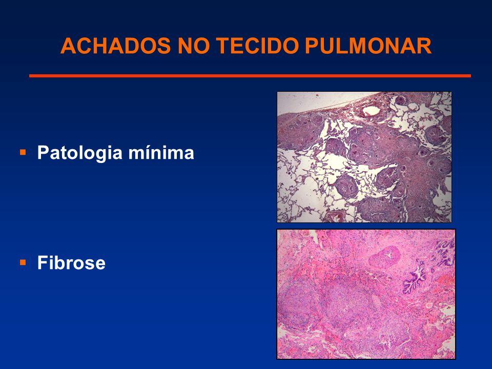 ACHADOS NO TECIDO PULMONAR  Patologia mínima  Fibrose