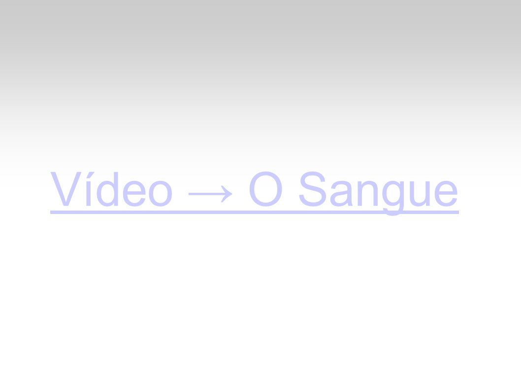 Vídeo → O Sangue
