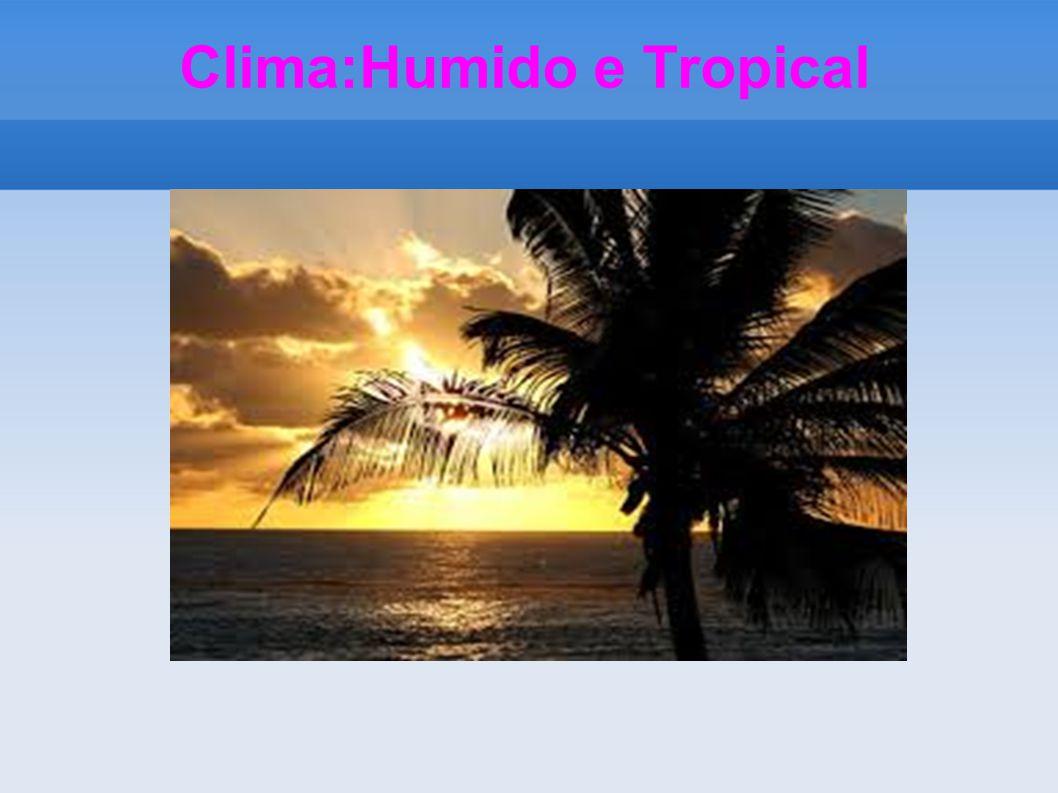 Clima:Humido e Tropical