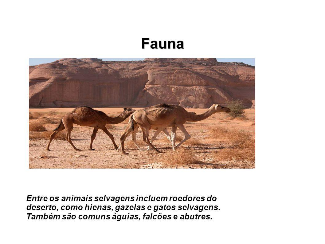 Fauna Entre os animais selvagens incluem roedores do deserto, como hienas, gazelas e gatos selvagens. Também são comuns águias, falcões e abutres.