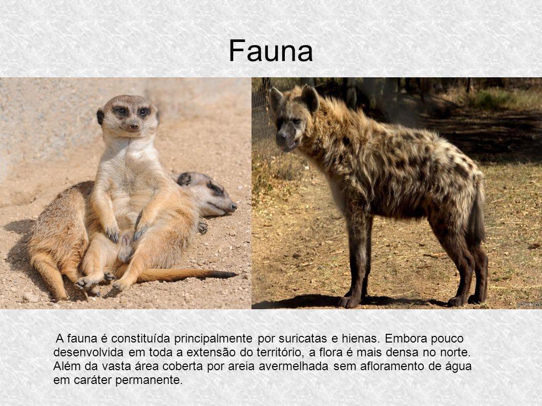 Fauna A fauna é constituída principalmente por suricatas e hienas. Embora pouco desenvolvida em toda a extensão do território, a flora é mais densa no
