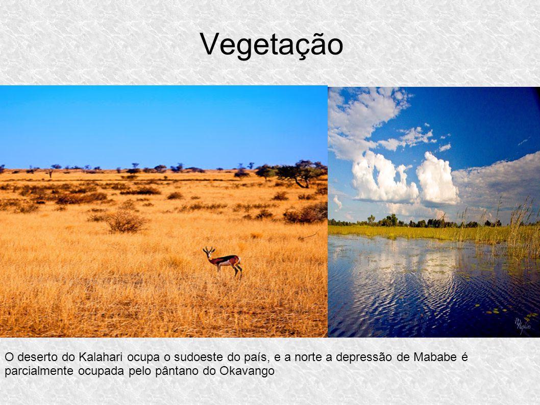 Vegetação O deserto do Kalahari ocupa o sudoeste do país, e a norte a depressão de Mababe é parcialmente ocupada pelo pântano do Okavango