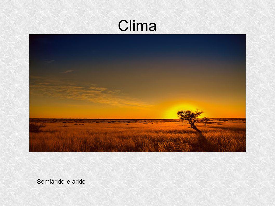 Clima Semiárido e árido