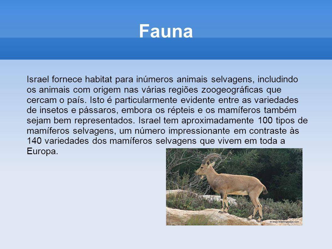 Fauna Israel fornece habitat para inúmeros animais selvagens, includindo os animais com origem nas várias regiões zoogeográficas que cercam o país. Is