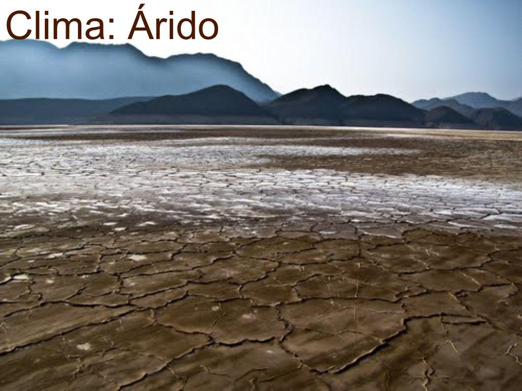 . Clima: Árido