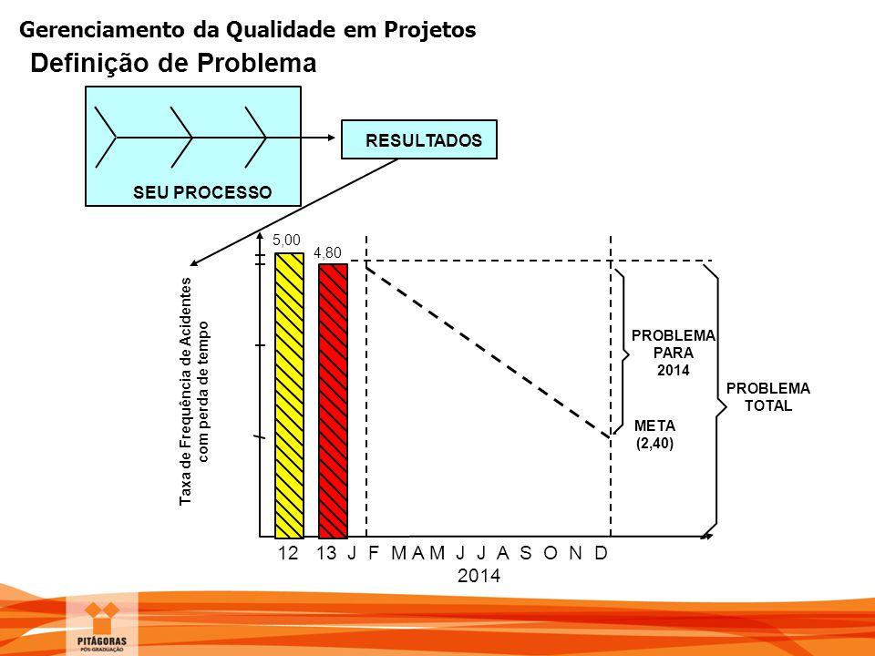 Gerenciamento da Qualidade em Projetos Definição de Problema SEU PROCESSO RESULTADOS 12 13 J F M A M J J A S O N D 2014 PROBLEMA PARA 2014 PROBLEMA TO