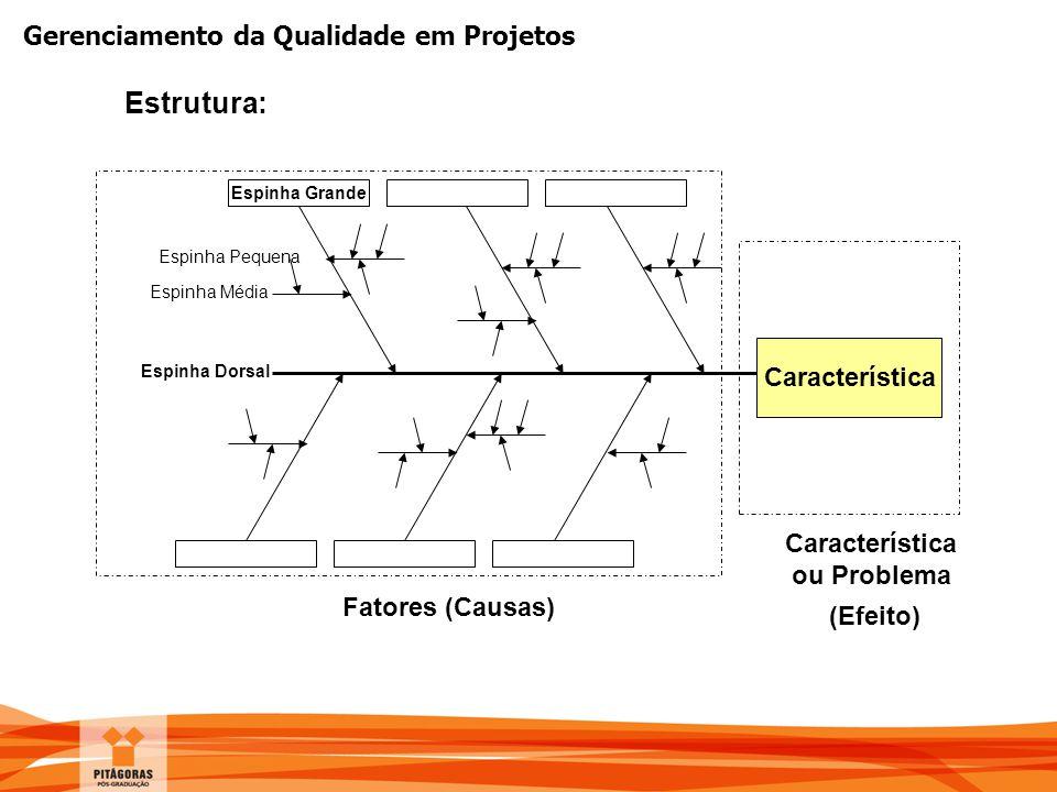 Gerenciamento da Qualidade em Projetos Característica ou Problema (Efeito) Espinha Grande Espinha Média Espinha Pequena Espinha Dorsal Fatores (Causas