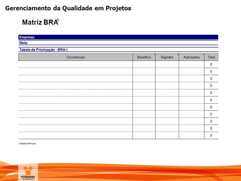 Gerenciamento da Qualidade em Projetos Matriz BRA ©