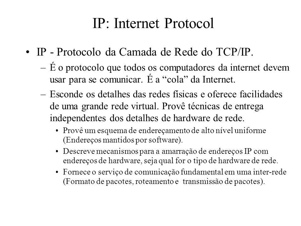 IP: Internet Protocol IP - Protocolo da Camada de Rede do TCP/IP. –É o protocolo que todos os computadores da internet devem usar para se comunicar. É