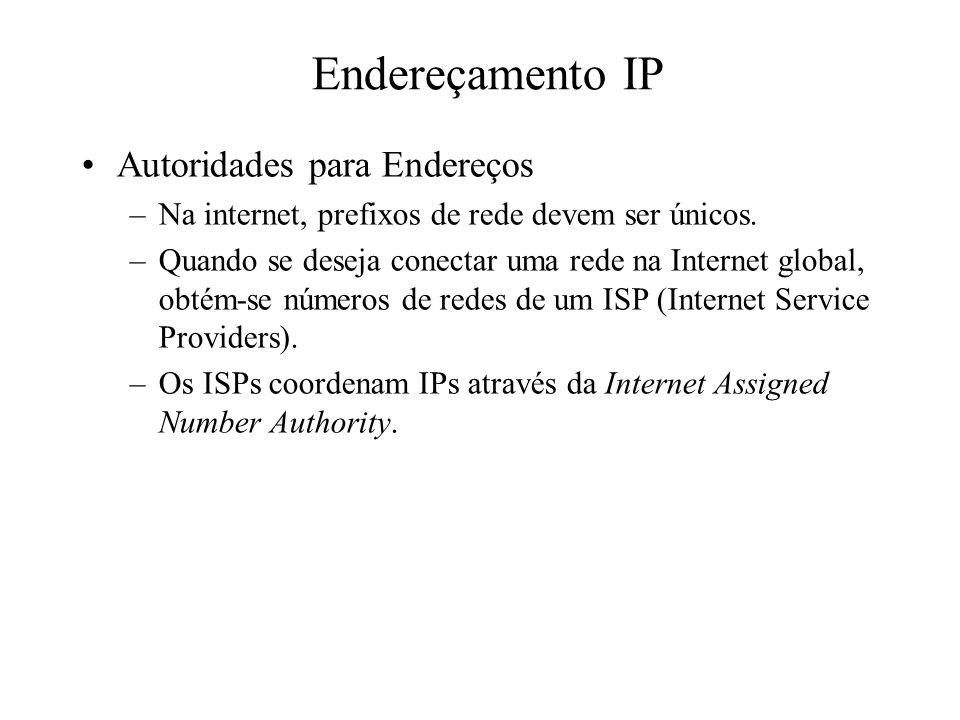 Autoridades para Endereços –Na internet, prefixos de rede devem ser únicos. –Quando se deseja conectar uma rede na Internet global, obtém-se números d