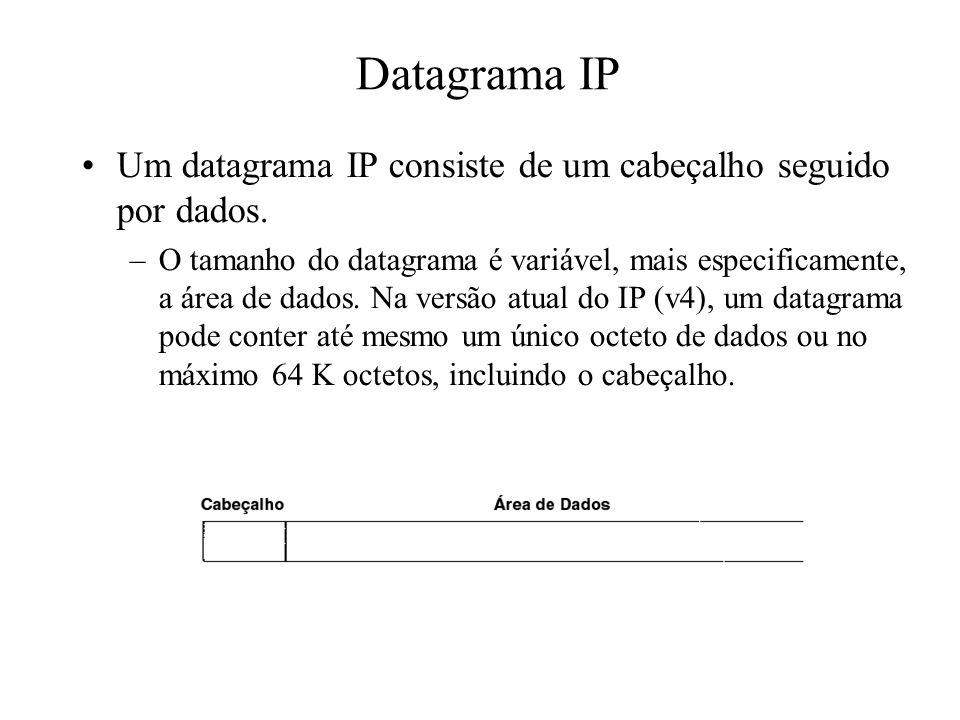 Datagrama IP Um datagrama IP consiste de um cabeçalho seguido por dados. –O tamanho do datagrama é variável, mais especificamente, a área de dados. Na
