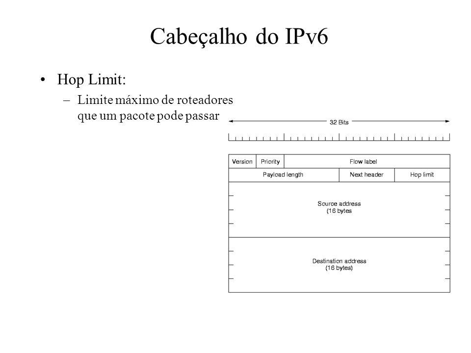 Cabeçalho do IPv6 Hop Limit: –Limite máximo de roteadores que um pacote pode passar