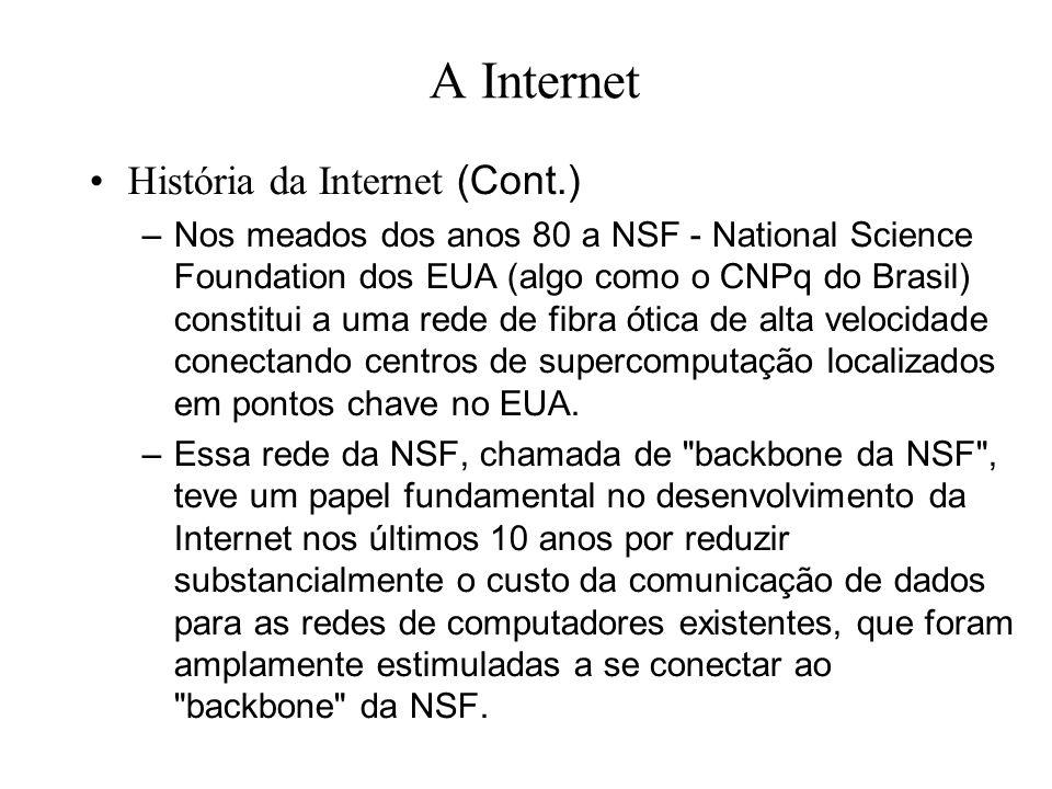 A Internet História da Internet (Cont.) –Nos meados dos anos 80 a NSF - National Science Foundation dos EUA (algo como o CNPq do Brasil) constitui a
