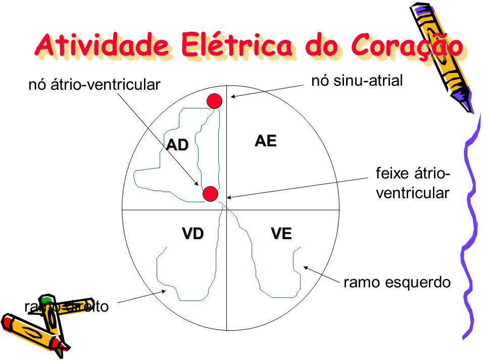 Atividade Elétrica do Coração nó sinu-atrial nó átrio-ventricular feixe átrio- ventricular ramo direito ramo esquerdo AD AE VDVE