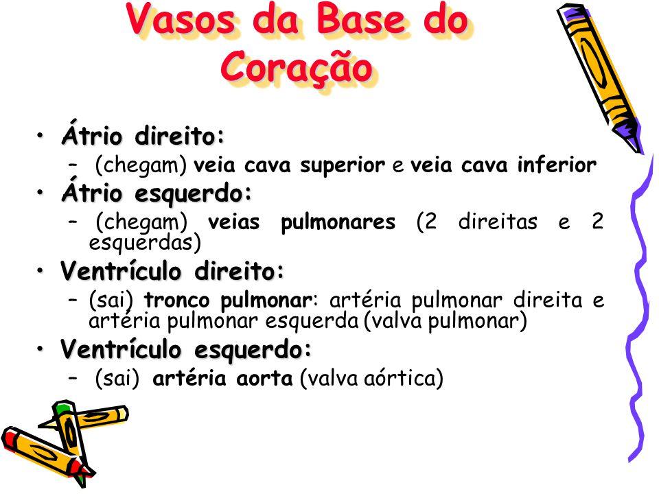 Vasos da Base do Coração Átrio direito:Átrio direito: – (chegam) veia cava superior e veia cava inferior Átrio esquerdo:Átrio esquerdo: – (chegam) vei