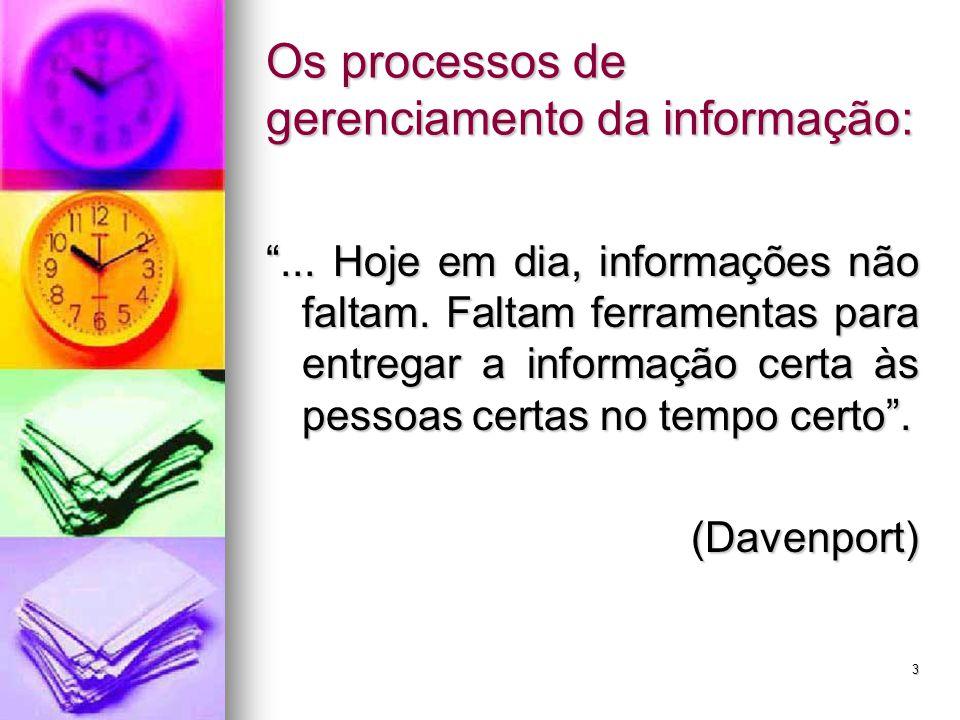 3 Os processos de gerenciamento da informação: ...