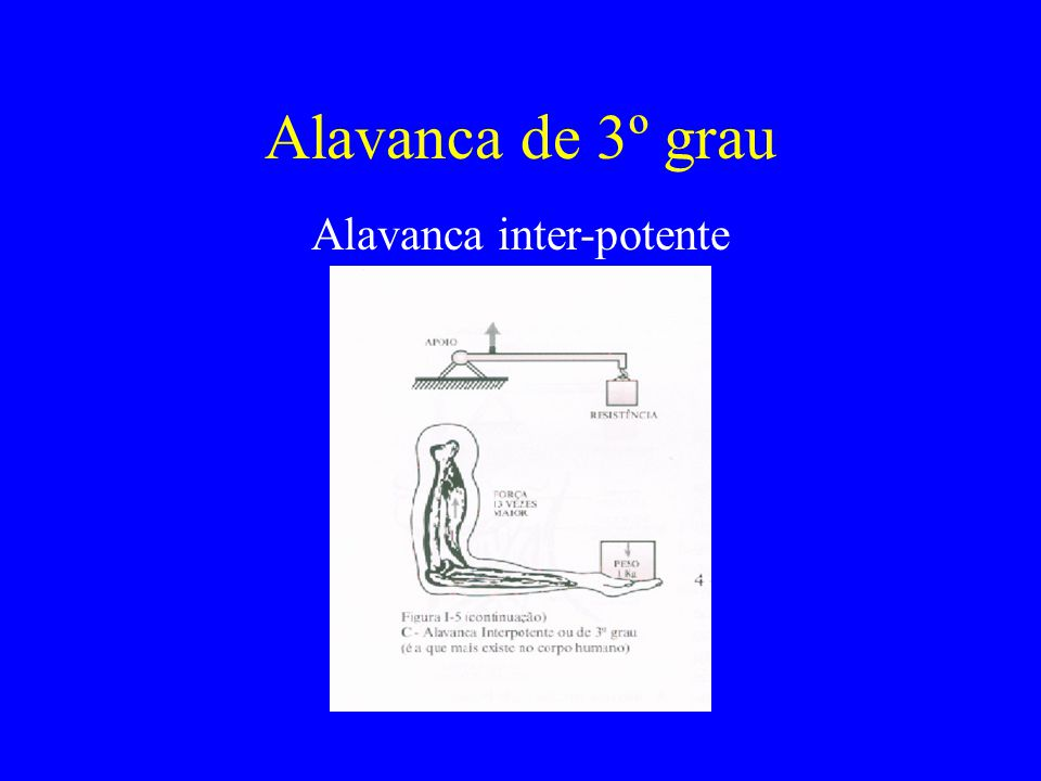 Alavanca de 3º grau Alavanca inter-potente