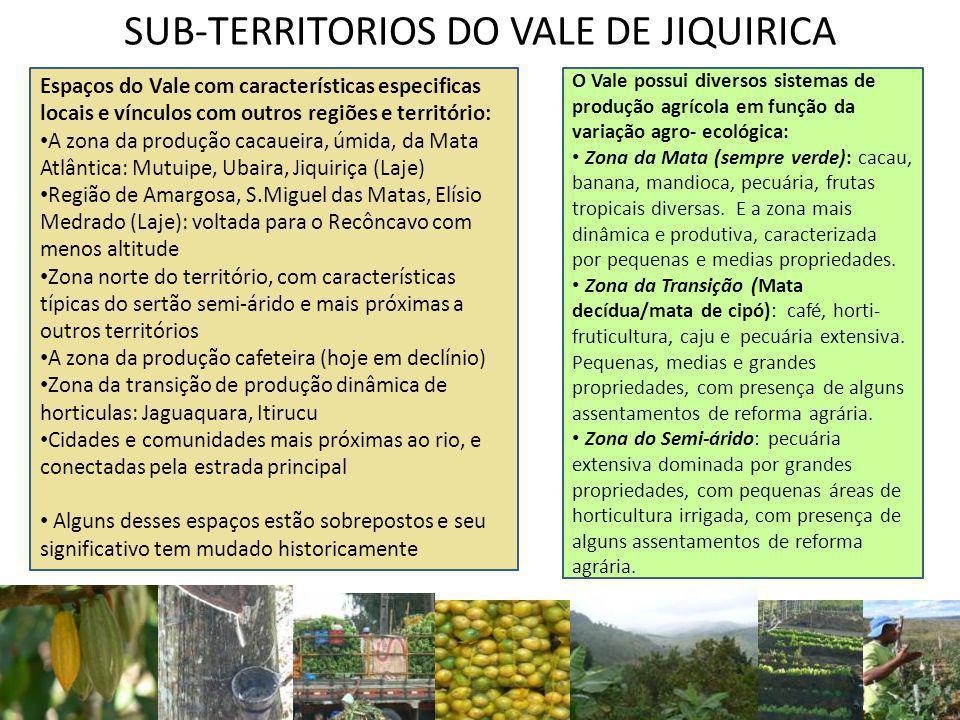SUB-TERRITORIOS DO VALE DE JIQUIRICA O Vale possui diversos sistemas de produção agrícola em função da variação agro- ecológica: Zona da Mata (sempre verde): cacau, banana, mandioca, pecuária, frutas tropicais diversas.