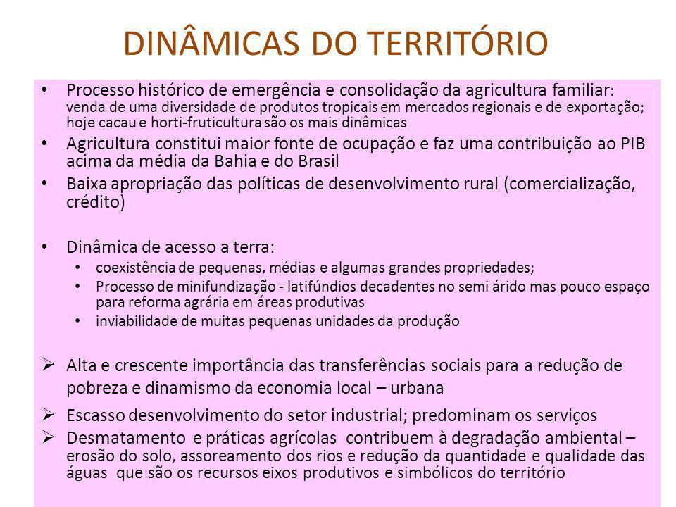 DINÂMICAS DO TERRITÓRIO Processo histórico de emergência e consolidação da agricultura familiar : venda de uma diversidade de produtos tropicais em mercados regionais e de exportação; hoje cacau e horti-fruticultura são os mais dinâmicas Agricultura constitui maior fonte de ocupação e faz uma contribuição ao PIB acima da média da Bahia e do Brasil Baixa apropriação das políticas de desenvolvimento rural (comercialização, crédito) Dinâmica de acesso a terra: coexistência de pequenas, médias e algumas grandes propriedades; Processo de minifundização - latifúndios decadentes no semi árido mas pouco espaço para reforma agrária em áreas produtivas inviabilidade de muitas pequenas unidades da produção  Alta e crescente importância das transferências sociais para a redução de pobreza e dinamismo da economia local – urbana  Escasso desenvolvimento do setor industrial; predominam os serviços  Desmatamento e práticas agrícolas contribuem à degradação ambiental – erosão do solo, assoreamento dos rios e redução da quantidade e qualidade das águas que são os recursos eixos produtivos e simbólicos do território