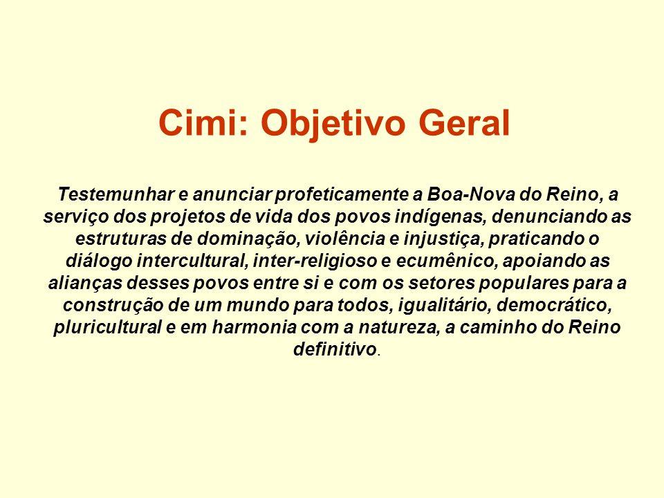Cimi: Linhas de ação 1.