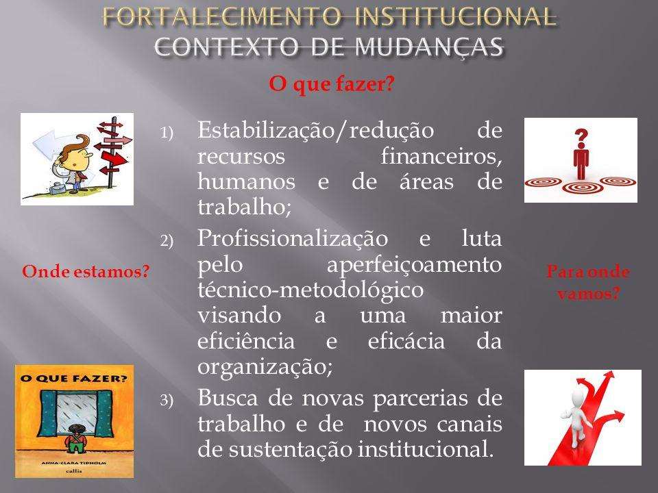 1) Estabilização/redução de recursos financeiros, humanos e de áreas de trabalho; 2) Profissionalização e luta pelo aperfeiçoamento técnico-metodológi