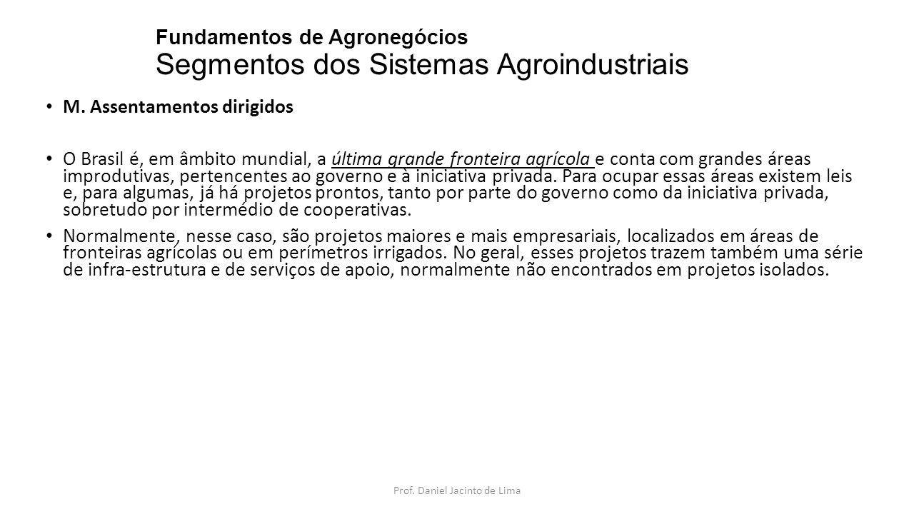 Fundamentos de Agronegócios Segmentos dos Sistemas Agroindustriais M. Assentamentos dirigidos O Brasil é, em âmbito mundial, a última grande fronteira