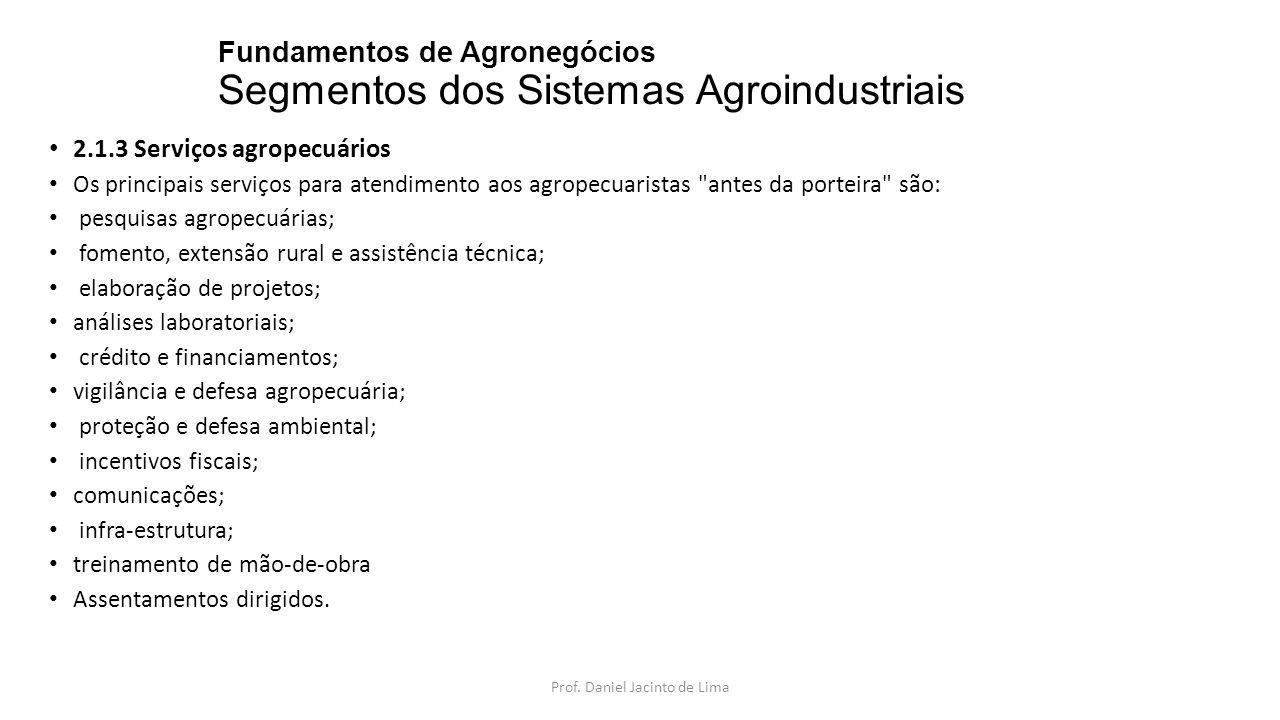 Fundamentos de Agronegócios Segmentos dos Sistemas Agroindustriais 2.1.3 Serviços agropecuários Os principais serviços para atendimento aos agropecuar