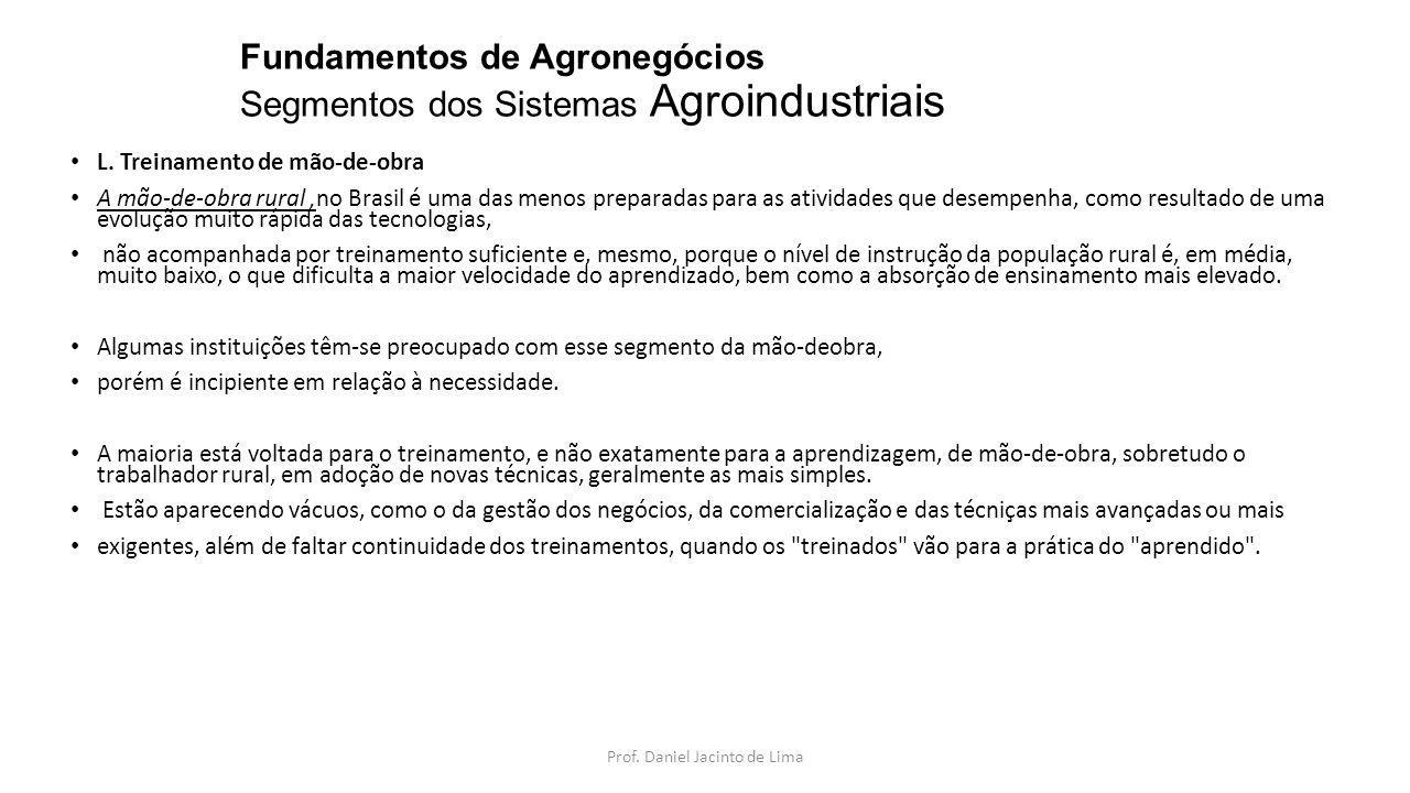 Fundamentos de Agronegócios Segmentos dos Sistemas Agroindustriais L. Treinamento de mão-de-obra A mão-de-obra rural,no Brasil é uma das menos prepara