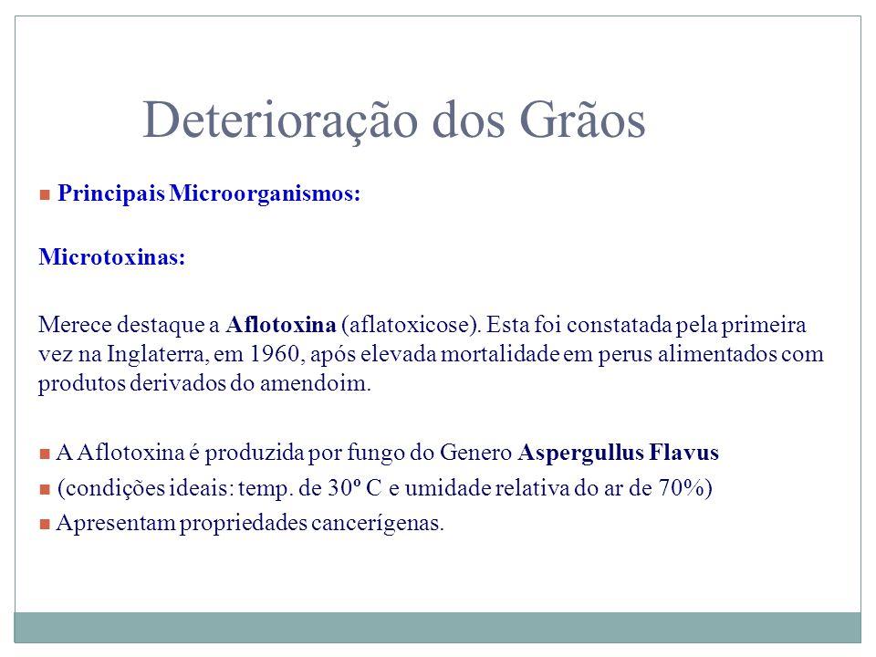 Deterioração dos Grãos n Principais Microorganismos: Microtoxinas: Merece destaque a Aflotoxina (aflatoxicose). Esta foi constatada pela primeira vez