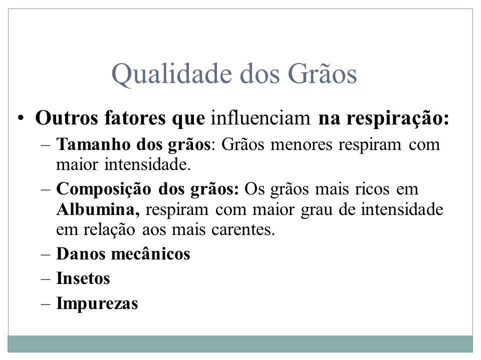 Qualidade dos Grãos Outros fatores que influenciam na respiração: –Tamanho dos grãos: Grãos menores respiram com maior intensidade. –Composição dos gr