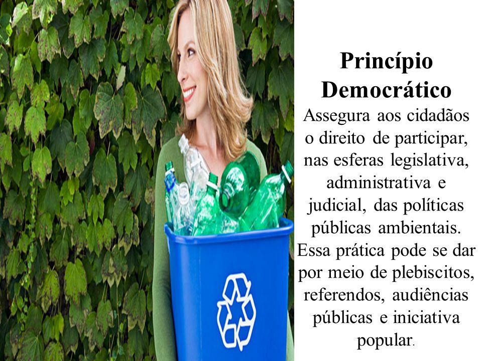 Princípio Democrático Assegura aos cidadãos o direito de participar, nas esferas legislativa, administrativa e judicial, das políticas públicas ambien