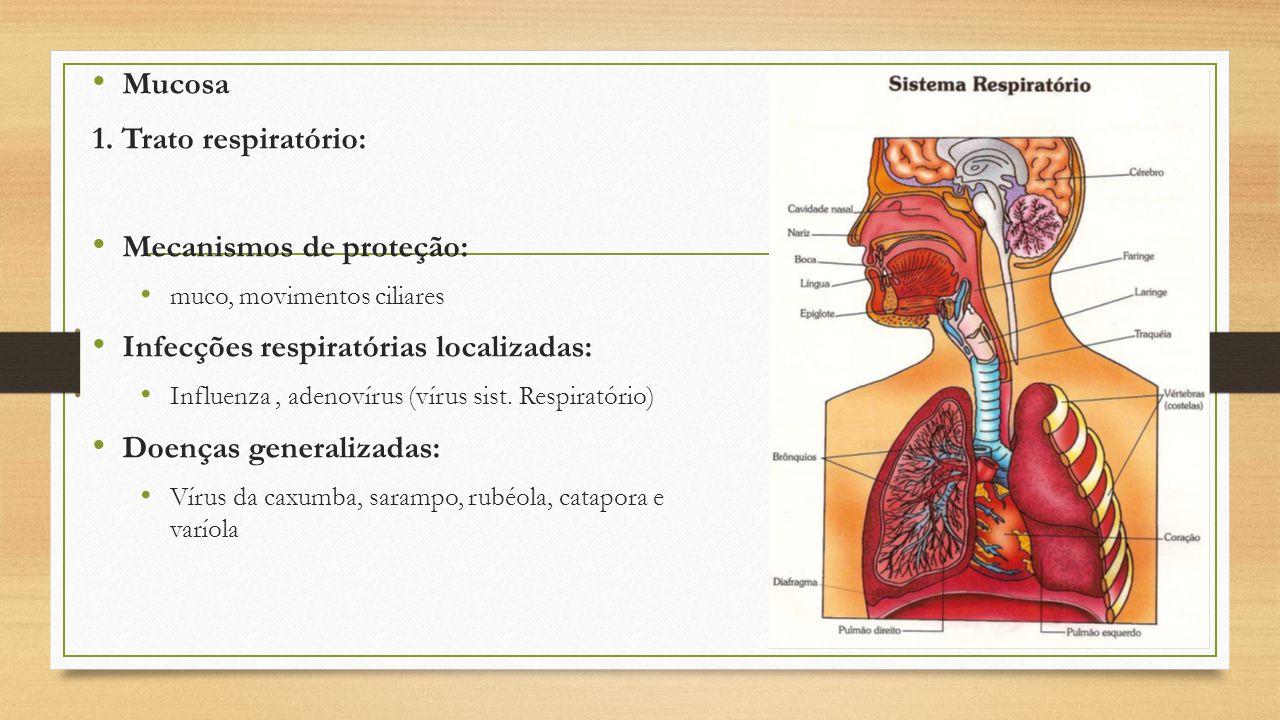 Mucosa 1. Trato respiratório: Mecanismos de proteção: muco, movimentos ciliares Infecções respiratórias localizadas: Influenza, adenovírus (vírus sist